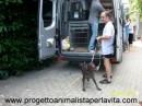 4 luglio 2010 Progetto Animalista P…