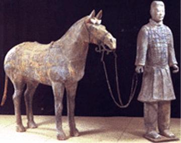 Cavalieri e cavallo