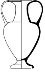 Anfora nicostenica