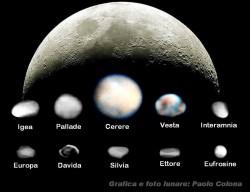 Confronto tra le dimensioni dei maggiori pianetini e la Luna