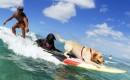 Pono, il primo cane che ha impersonato Vincent mentre fa sport con il suo padrone e il suo amico Hona