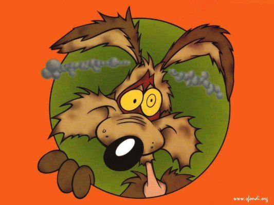 Willy il coyote cattura beep