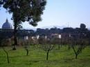 I I S Agricoltura e Ambiente Domizia Lucilla Roma