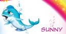 I delfini da collezione De Agostini