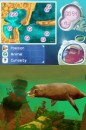 L'Isola dei Delfini Avventure Sottomarine Nintendo DS Recensione