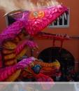 Cento-immagini del Carnevale