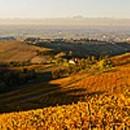 La Valle del Riesling a Calvignano