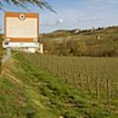 Segnaletica stradale della Valle del Riesling