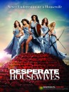 Desperate housewives poster  sesta stagione