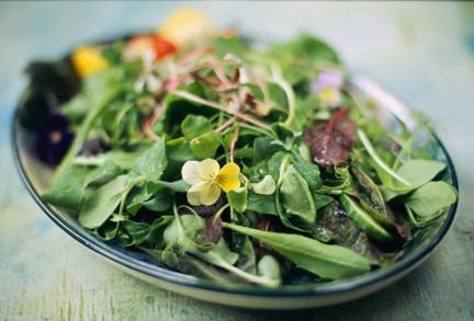 Diete Veloci E Facili : Diete e alimentazione le guide di supereva