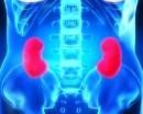 Dimagrire per la salute renale