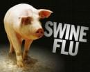 S.O.S. Influenza A/H1N1