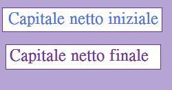 capitale netto inziale e finale