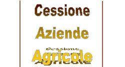 cessione aziende agricole