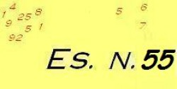 Esercizio di ragioneria n.55