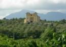 Festa del Vino di Castelvenere