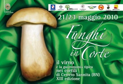 Funghi_in_Corte