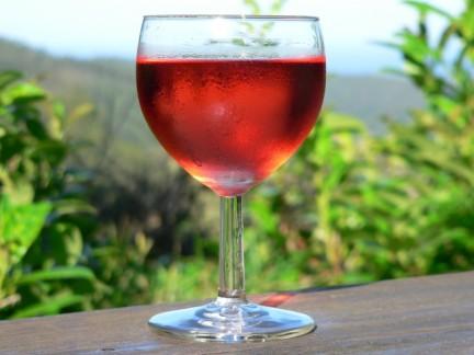 vino_laziale