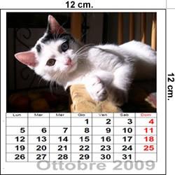 Esempio Calendario.Calendario Cd Fai Da Te