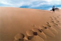 deserto_gobi