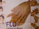 ridurre il rischio di contrarre la nuova influenza a h1n1 con la fitoterapia e i rimedi naturali