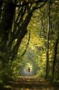 In collaborazione con l'agenzia Contrasto, 150 immagini racconteranno la primavera per Sasso