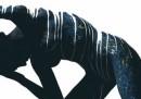 Emma Hack. L'arte della fotografia associata al body painting per ricercate immagini illusorie, un unicum di corpi e lo sfondi