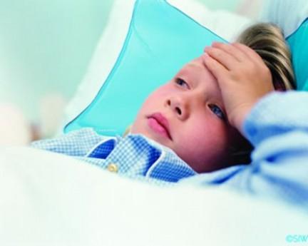 Influenza A in Friuli