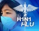 Influenza A/H1N1 in Friuli
