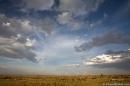 Masai Mara, spettacolo sconfinato