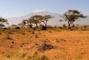 Masai Mara con vista sul Kilimanjaro