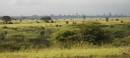 la savana alle porte di Nairobi