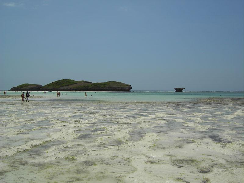 Bassa mare a Watamu