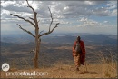 guerriero Samburu