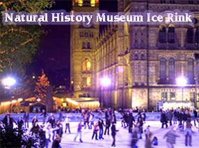 ice rink pictures from National History Museum website