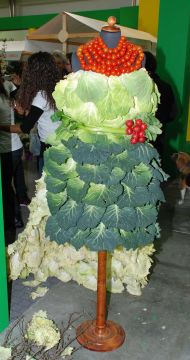 dress salad ortogiardino