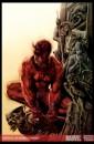 Ecco alcune cover di Daredevil disegnate da Lee Bermejo!