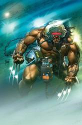 adam kubert, marvel comics cover, wolverine
