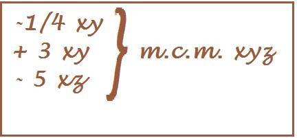 m.c.m. monomi