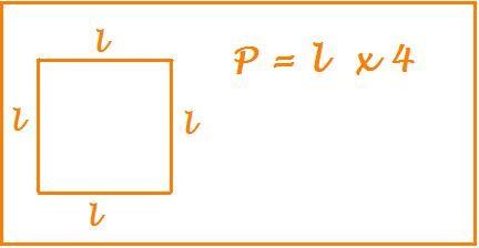 perimetro del quadrato