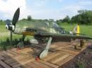 FW 190 D-9 - Roberto Colaianni