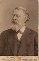 Il violinista amico di Brahms