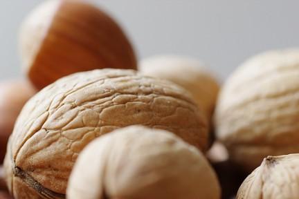i dieci migliori alimenti per il cervello