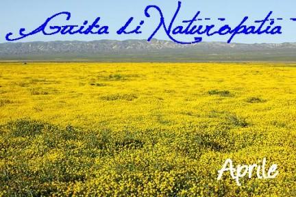 naturopatia naturopata