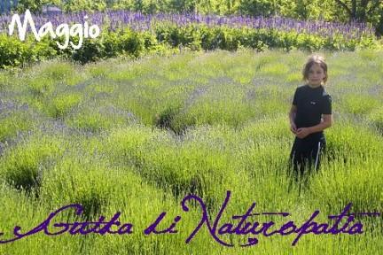 naturopatia naturopata milano