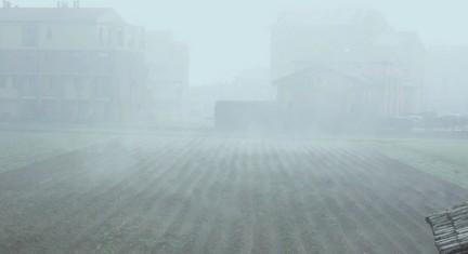 nebbia sogni