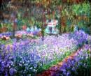 serenità e colori nella mente