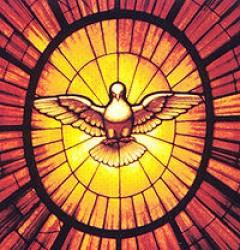 Colomba dello Spirito Santo in San Pietro