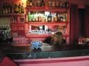 Jack Bar 23