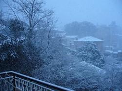 """""""Nevicata di febbraio 2010"""""""